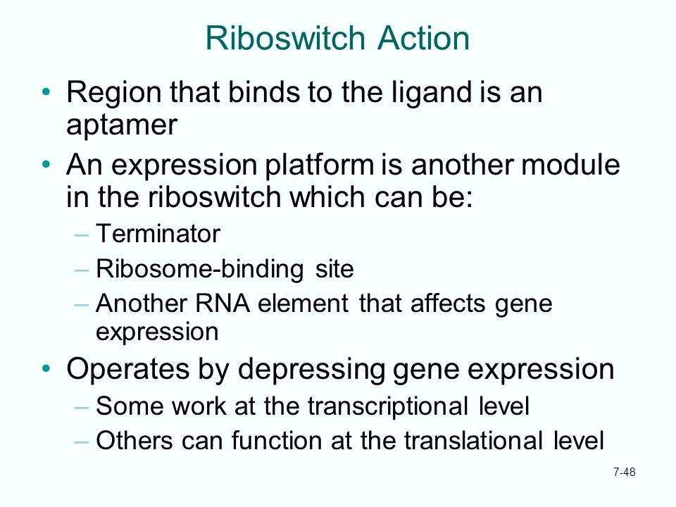Riboswitch Action Region that binds to the ligand is an aptamer