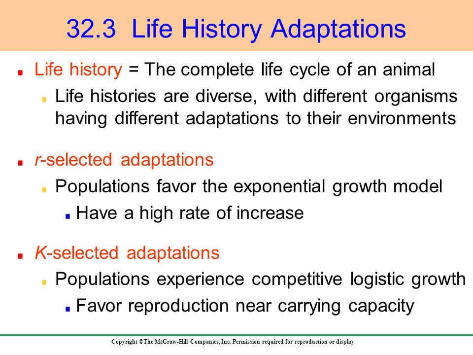 32.3 Life History Adaptations