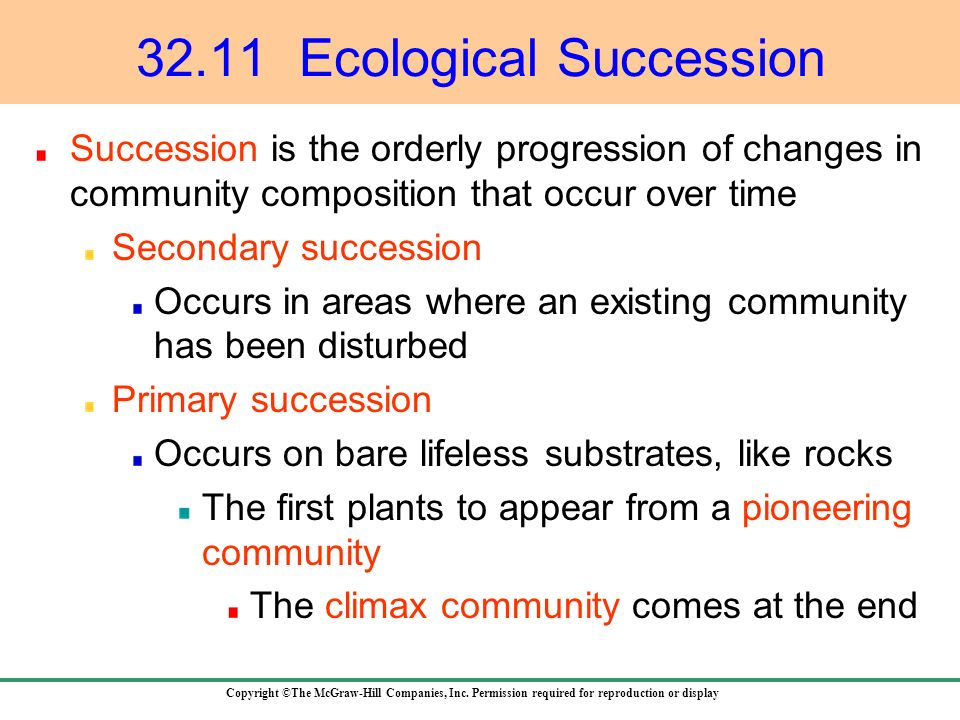 32.11 Ecological Succession