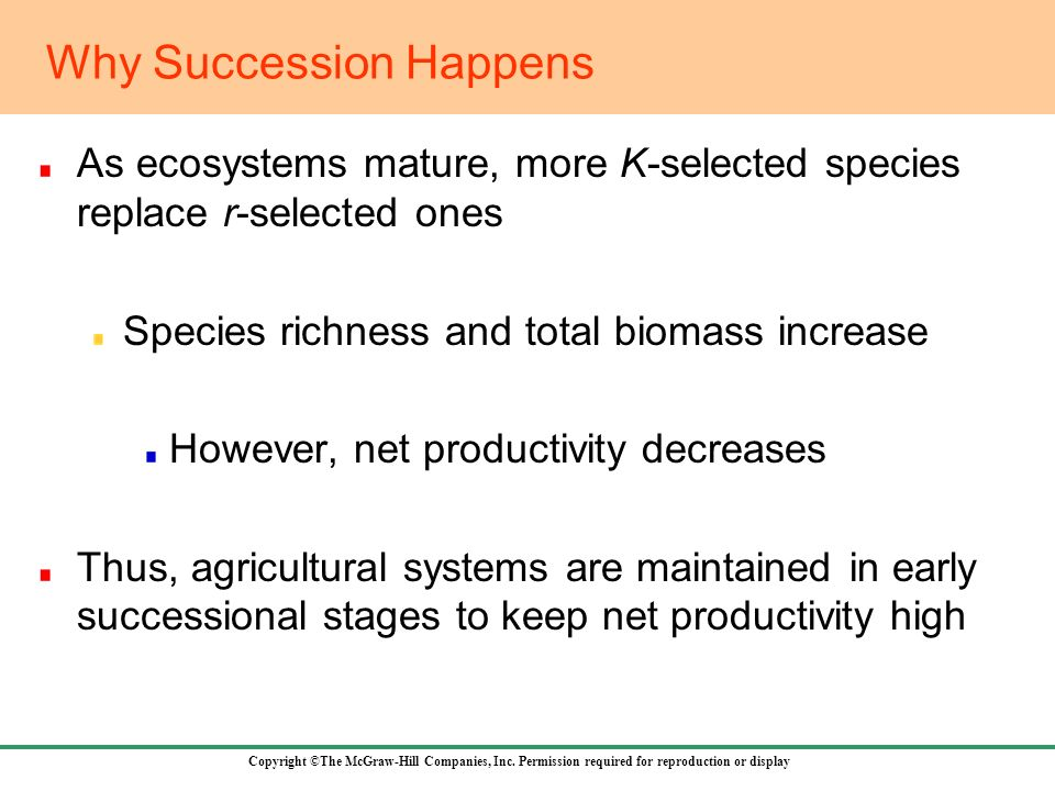 Why Succession Happens