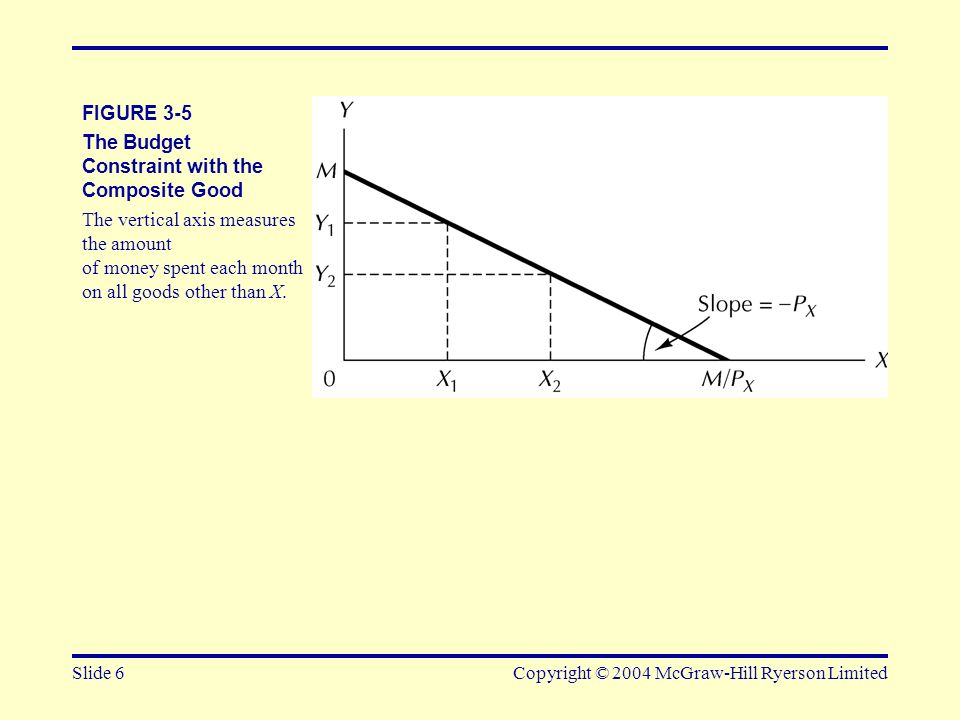 The Budget Constraint with the Composite Good
