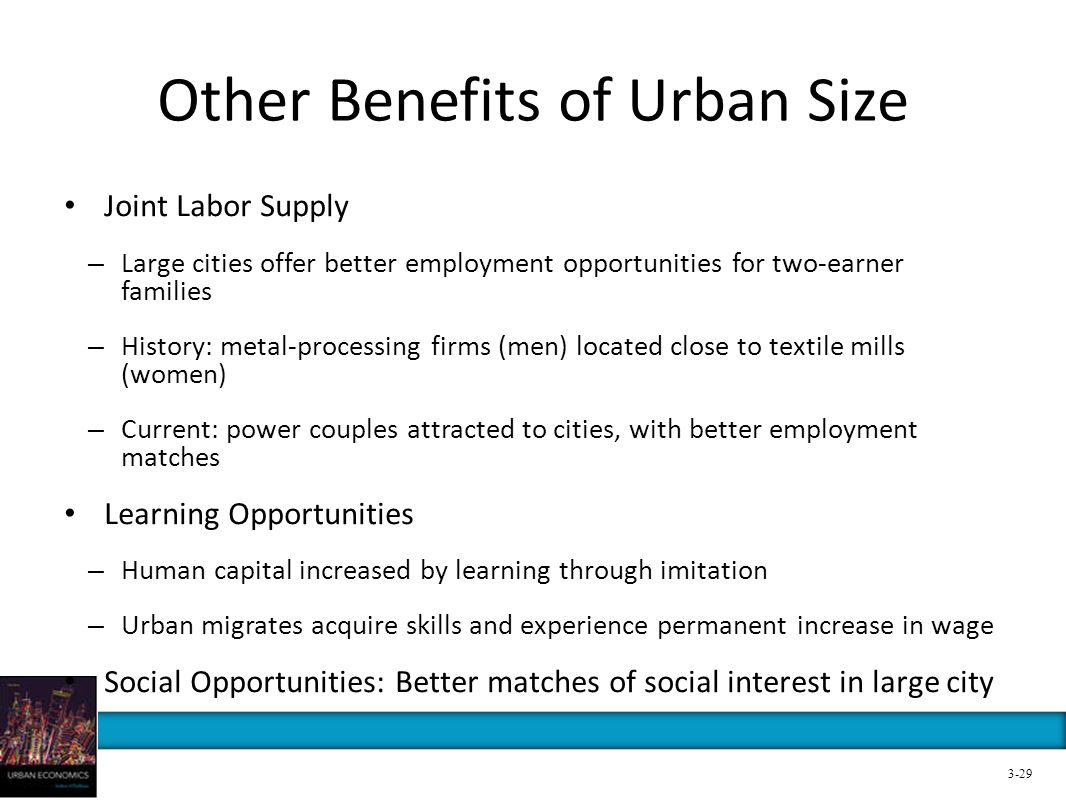 Other Benefits of Urban Size