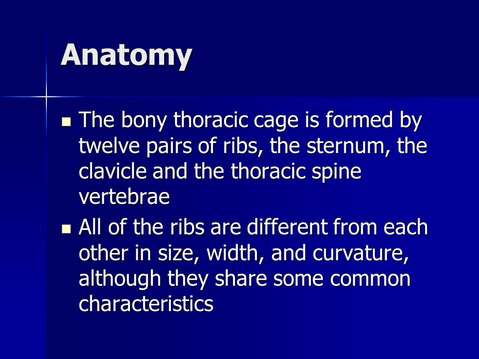 Anatomy The bony thoracic cage is formed by twelve pairs of ribs, the sternum, the clavicle and the thoracic spine vertebrae.