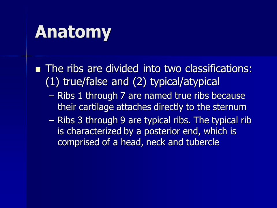 Anatomy The ribs are divided into two classifications: (1) true/false and (2) typical/atypical.