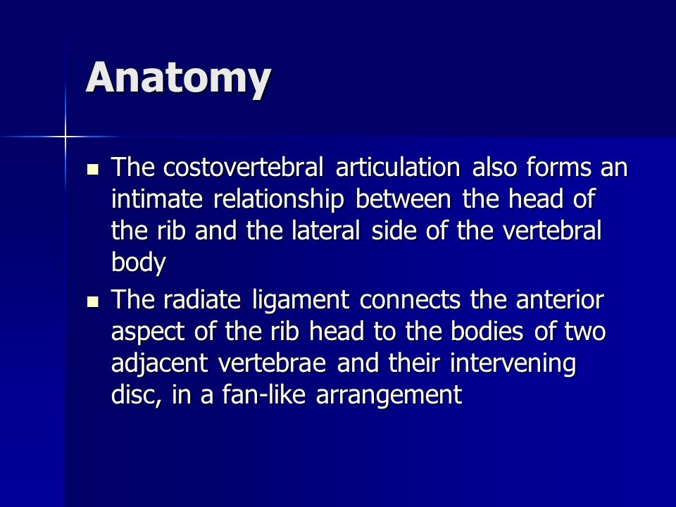 Anatomy The costovertebral articulation also forms an intimate relationship between the head of the rib and the lateral side of the vertebral body.