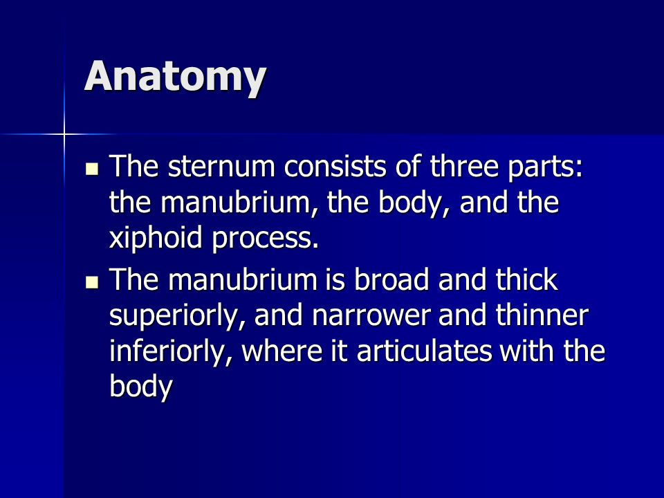 Anatomy The sternum consists of three parts: the manubrium, the body, and the xiphoid process.