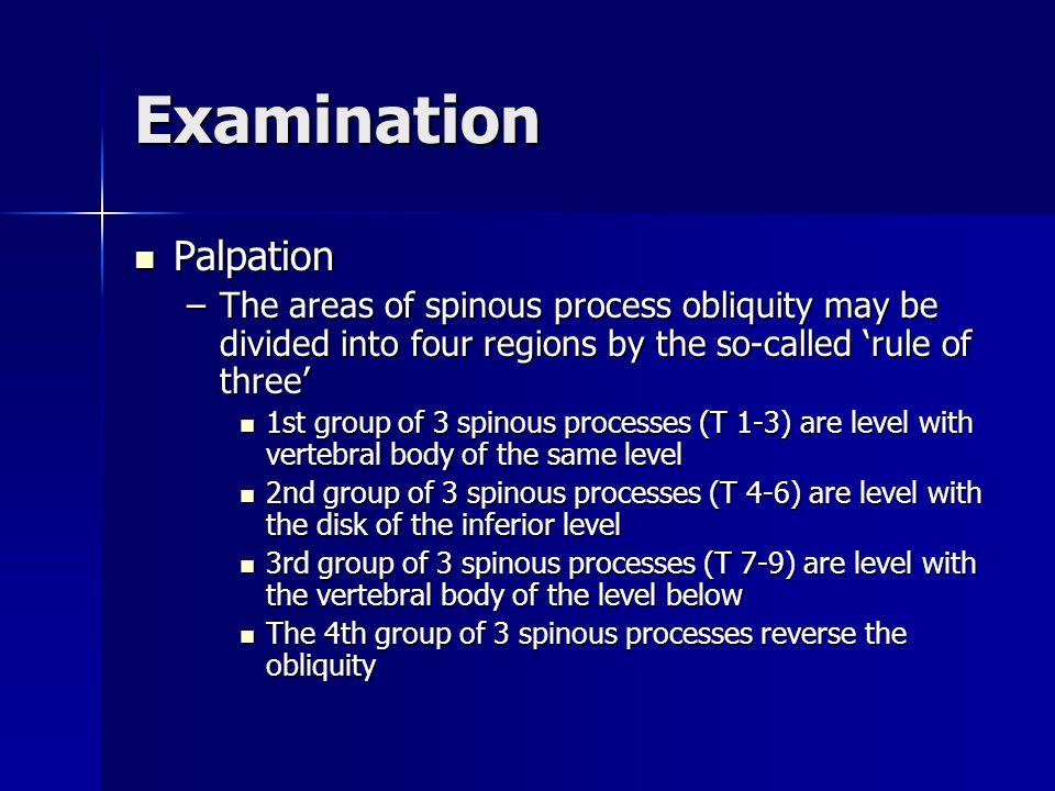 Examination Palpation