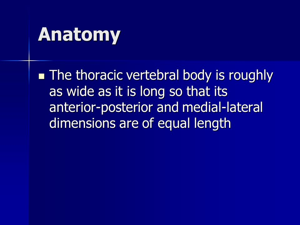 Anatomy The thoracic vertebral body is roughly as wide as it is long so that its anterior-posterior and medial-lateral dimensions are of equal length.