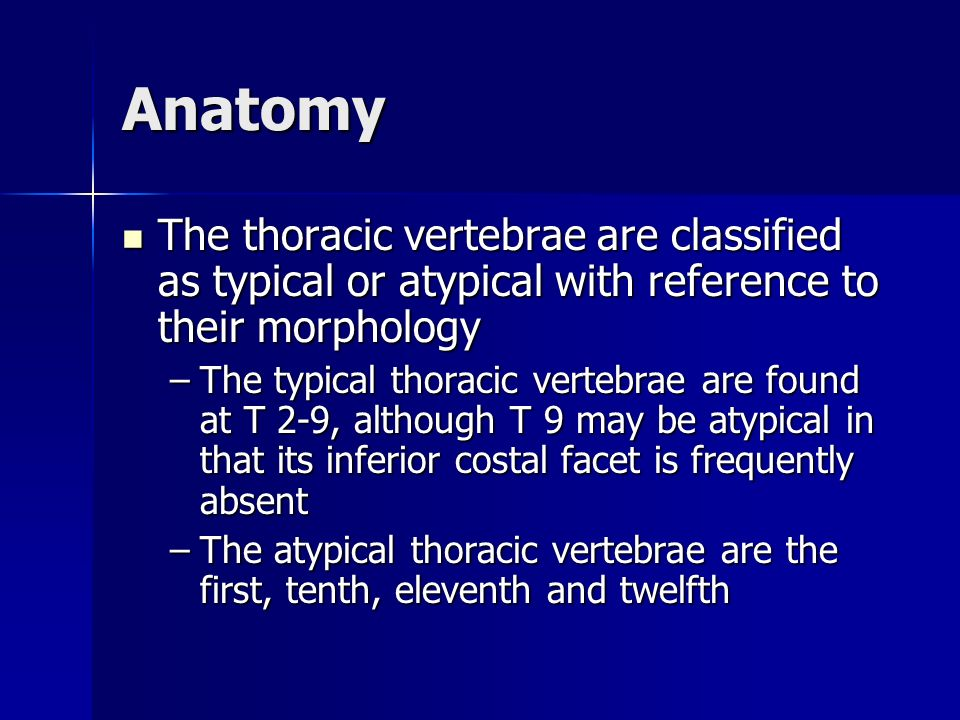 Anatomy The thoracic vertebrae are classified as typical or atypical with reference to their morphology.