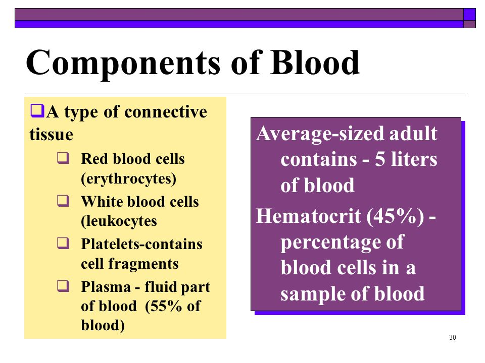 Components of Blood Average-sized adult contains - 5 liters of blood