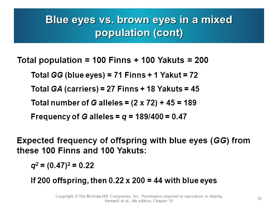 Blue eyes vs. brown eyes in a mixed population (cont)