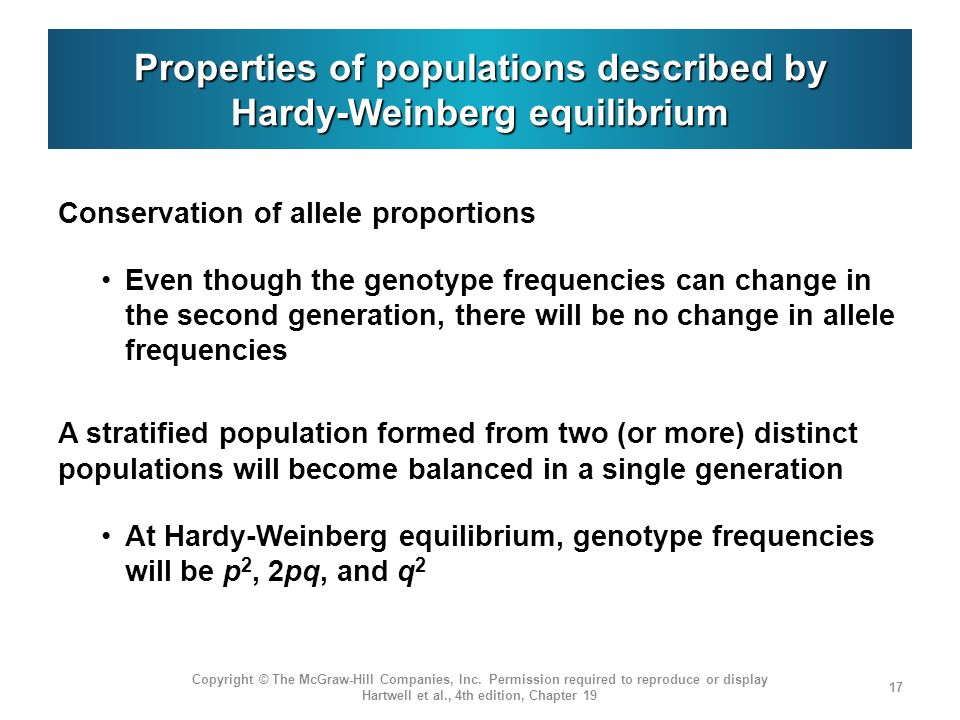 Properties of populations described by Hardy-Weinberg equilibrium