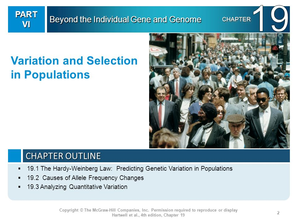 19 Variation and Selection in Populations CHAPTER OUTLINE PART VI