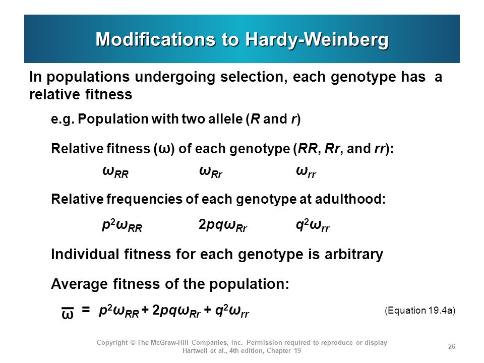 Modifications to Hardy-Weinberg