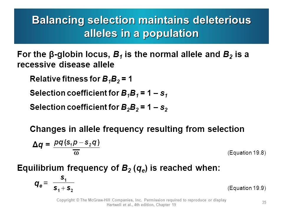 Balancing selection maintains deleterious alleles in a population