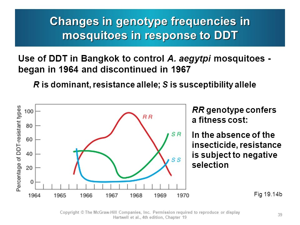 Changes in genotype frequencies in mosquitoes in response to DDT