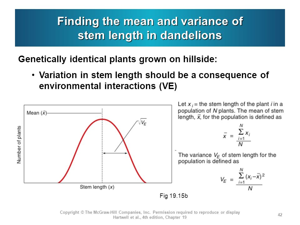Finding the mean and variance of stem length in dandelions