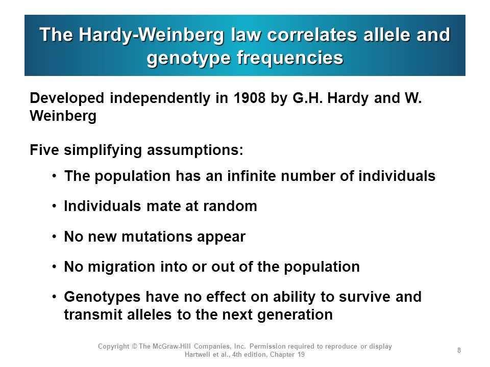 The Hardy-Weinberg law correlates allele and genotype frequencies