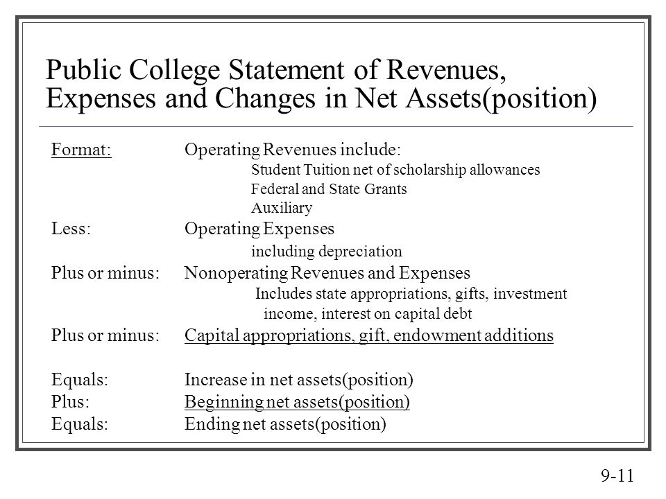 Public College Statement of Revenues, Expenses and Changes in Net Assets(position)