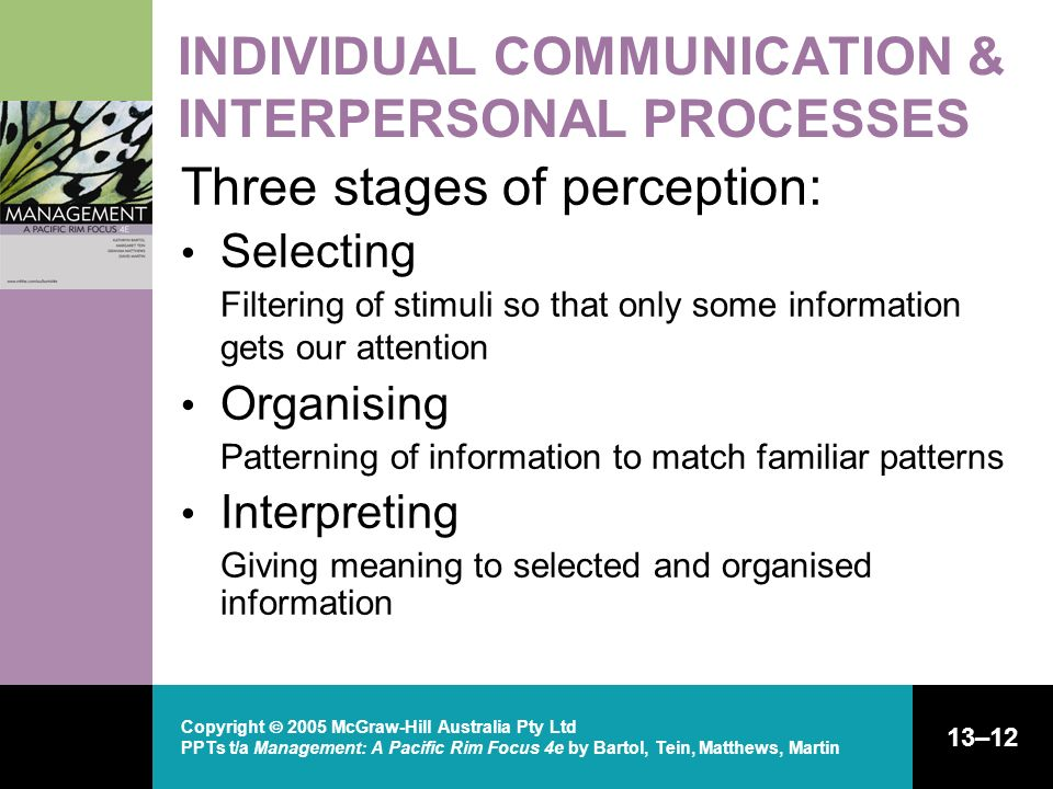 INDIVIDUAL COMMUNICATION & INTERPERSONAL PROCESSES