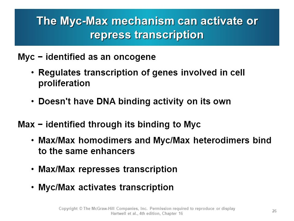 The Myc-Max mechanism can activate or repress transcription