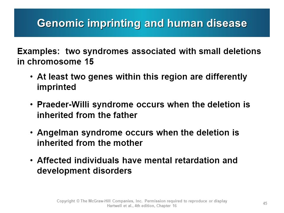 Genomic imprinting and human disease