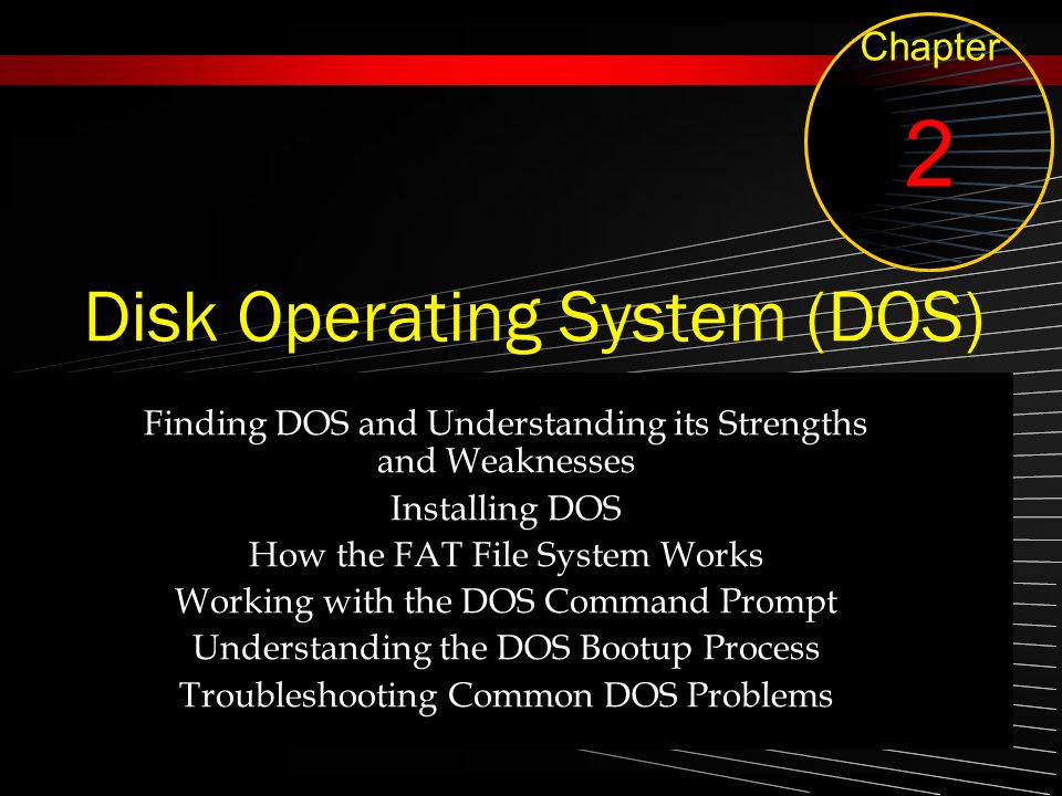 Disk Operating System (DOS)