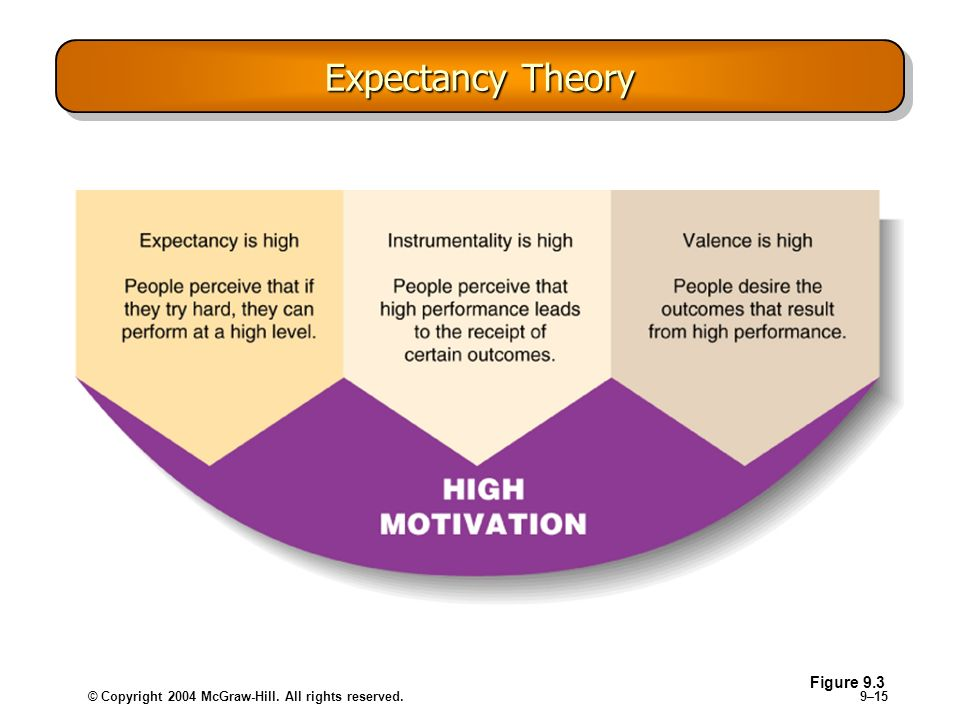 Expectancy Theory Figure 9.3