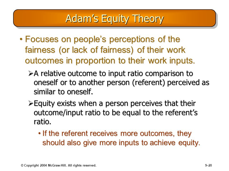 Adam's Equity Theory Focuses on people's perceptions of the fairness (or lack of fairness) of their work outcomes in proportion to their work inputs.