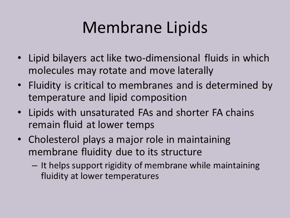 BIO 224 Introduction to Molecular and Cell Biology - ppt download