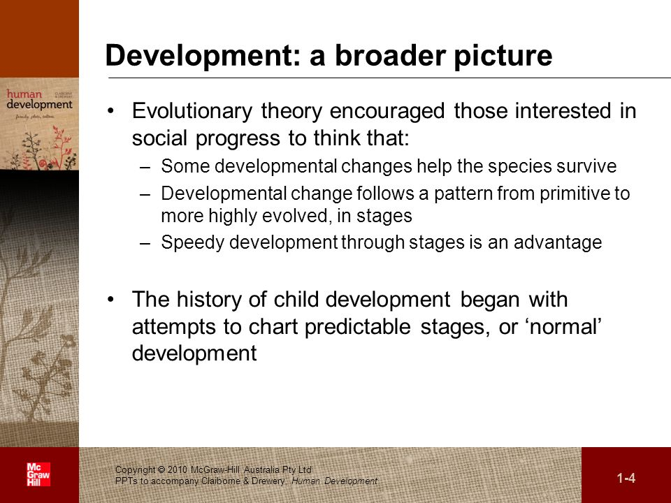 Development: a broader picture
