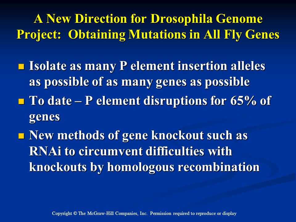 To date – P element disruptions for 65% of genes