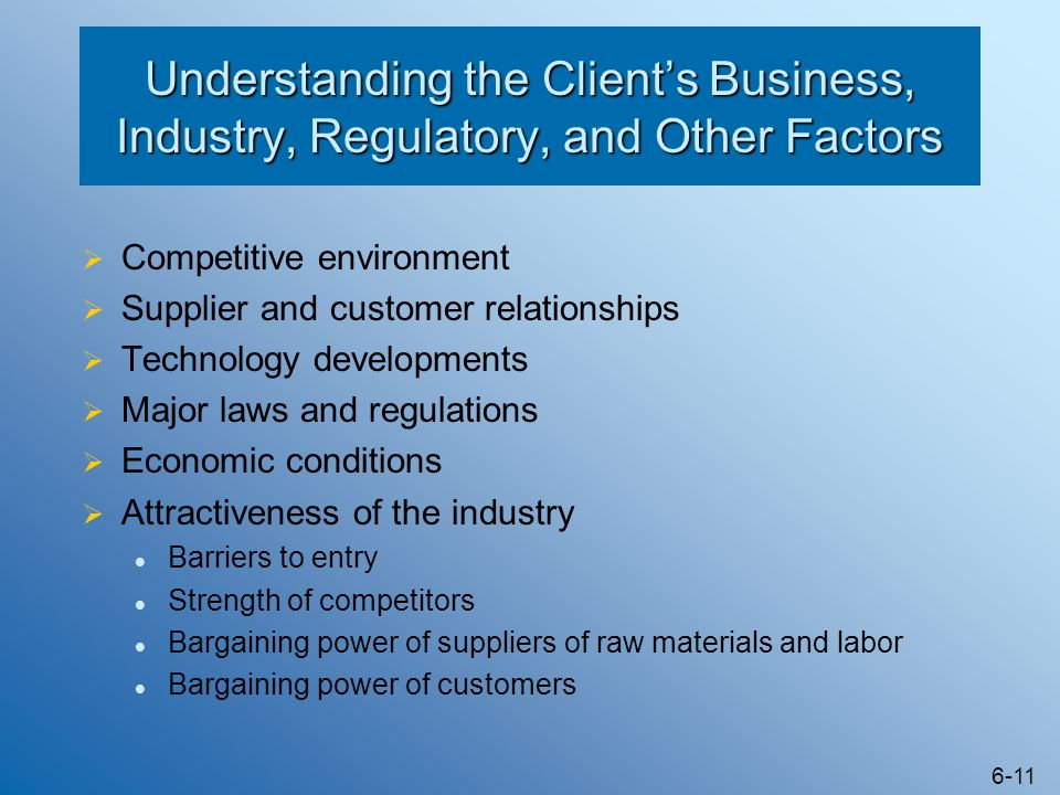 Understanding the Client's Business, Industry, Regulatory, and Other Factors