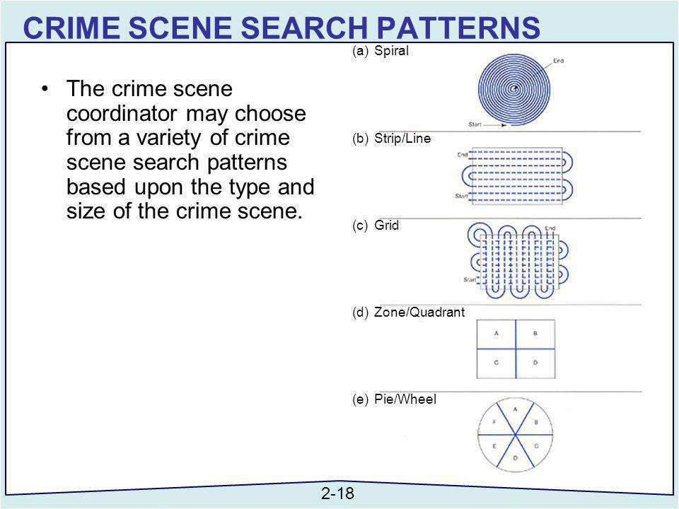 types of crime scene pdf