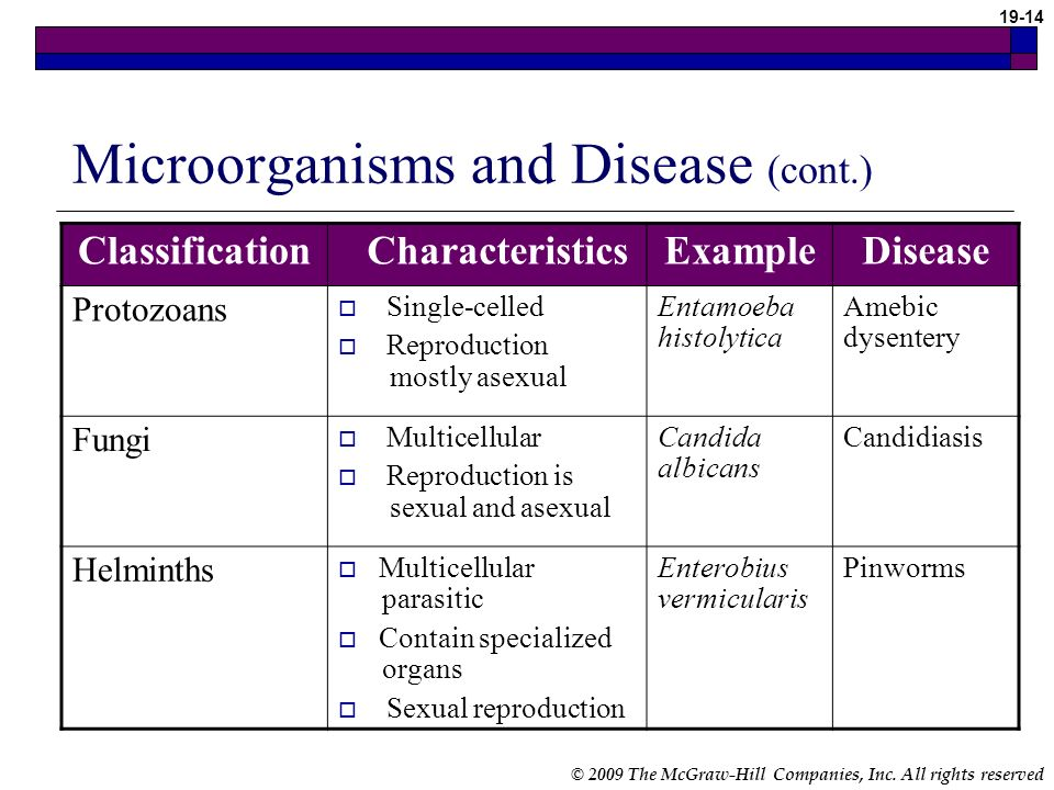 Microorganisms and Disease (cont.)