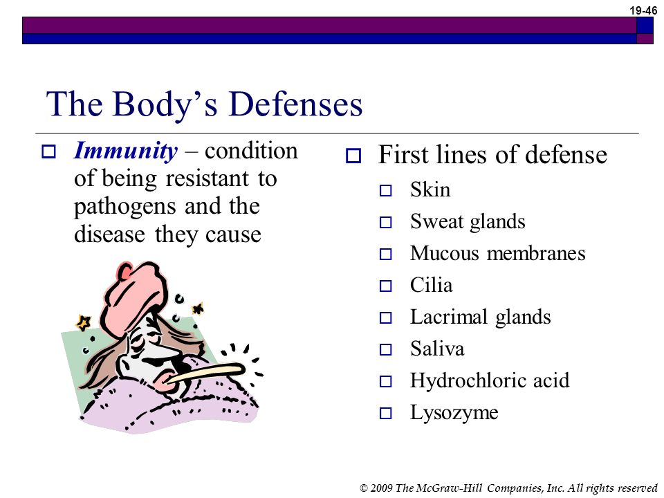 The Body's Defenses First lines of defense
