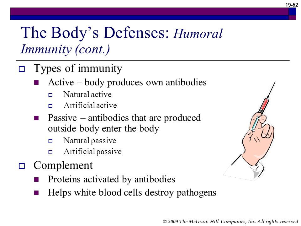 The Body's Defenses: Humoral Immunity (cont.)