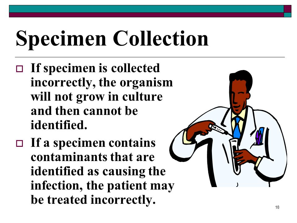 Specimen Collection If specimen is collected incorrectly, the organism will not grow in culture and then cannot be identified.