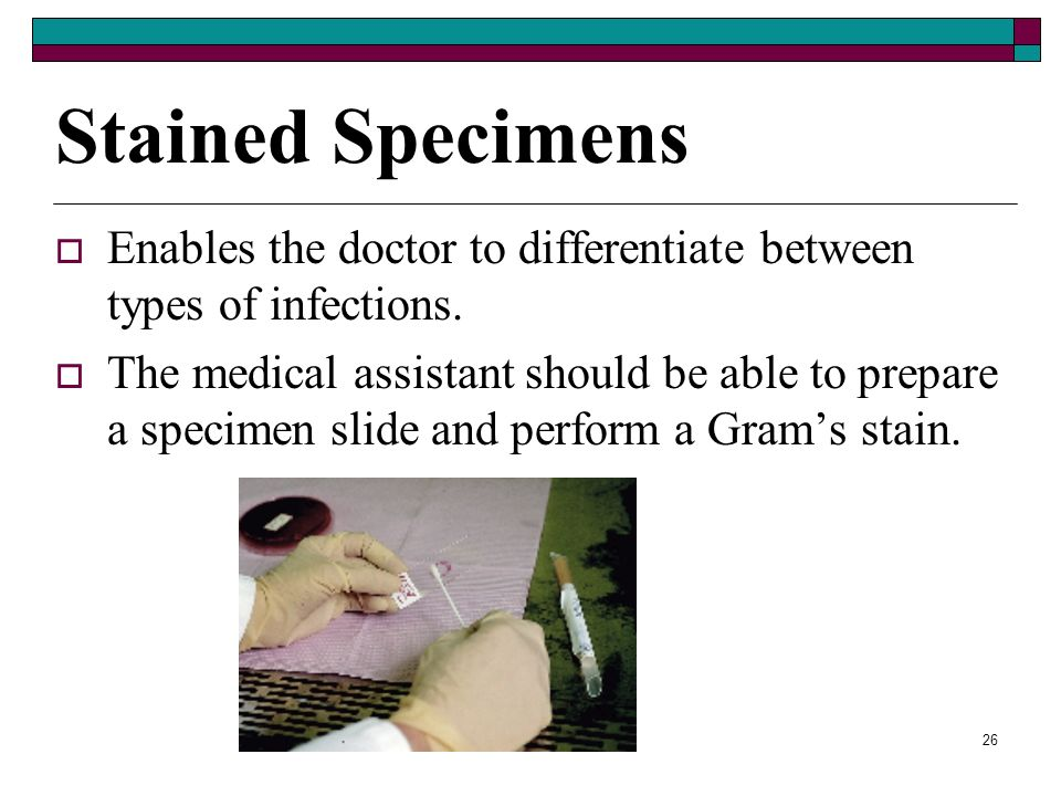 Stained Specimens Enables the doctor to differentiate between types of infections.