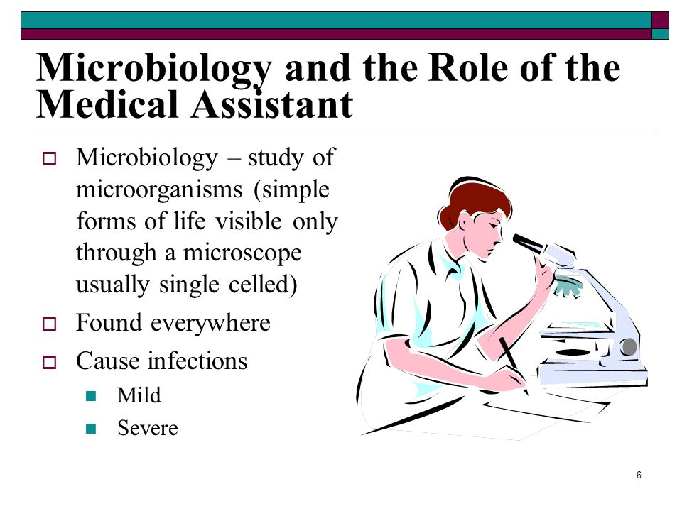 Microbiology and the Role of the Medical Assistant