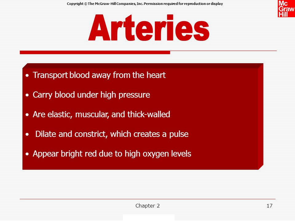 Arteries Transport blood away from the heart