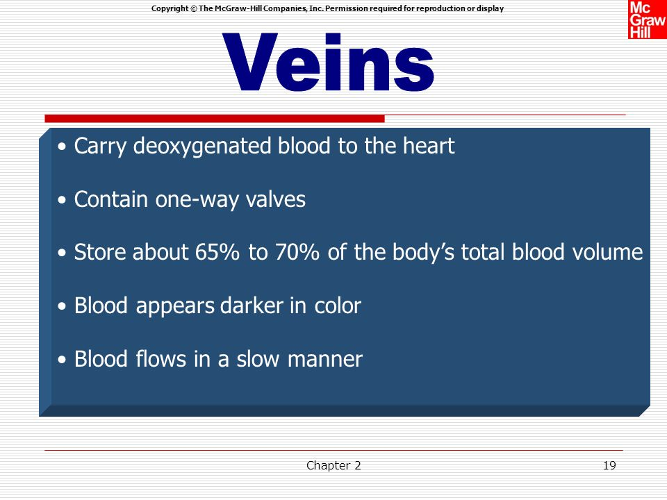 Veins Carry deoxygenated blood to the heart Contain one-way valves