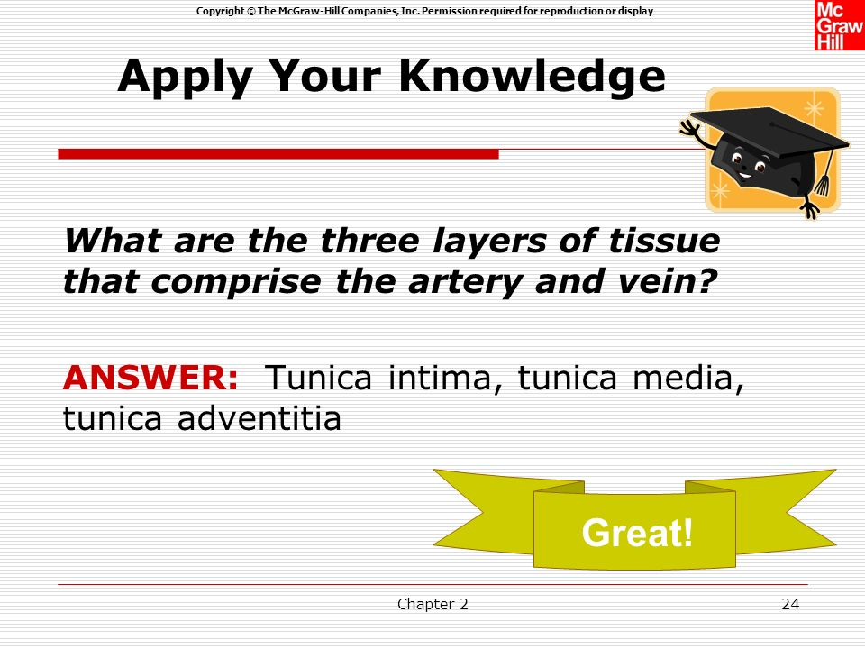 Apply Your Knowledge Great!