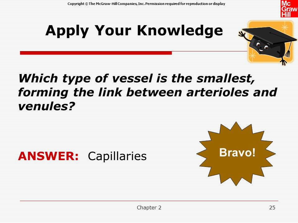 Apply Your Knowledge Which type of vessel is the smallest, forming the link between arterioles and venules
