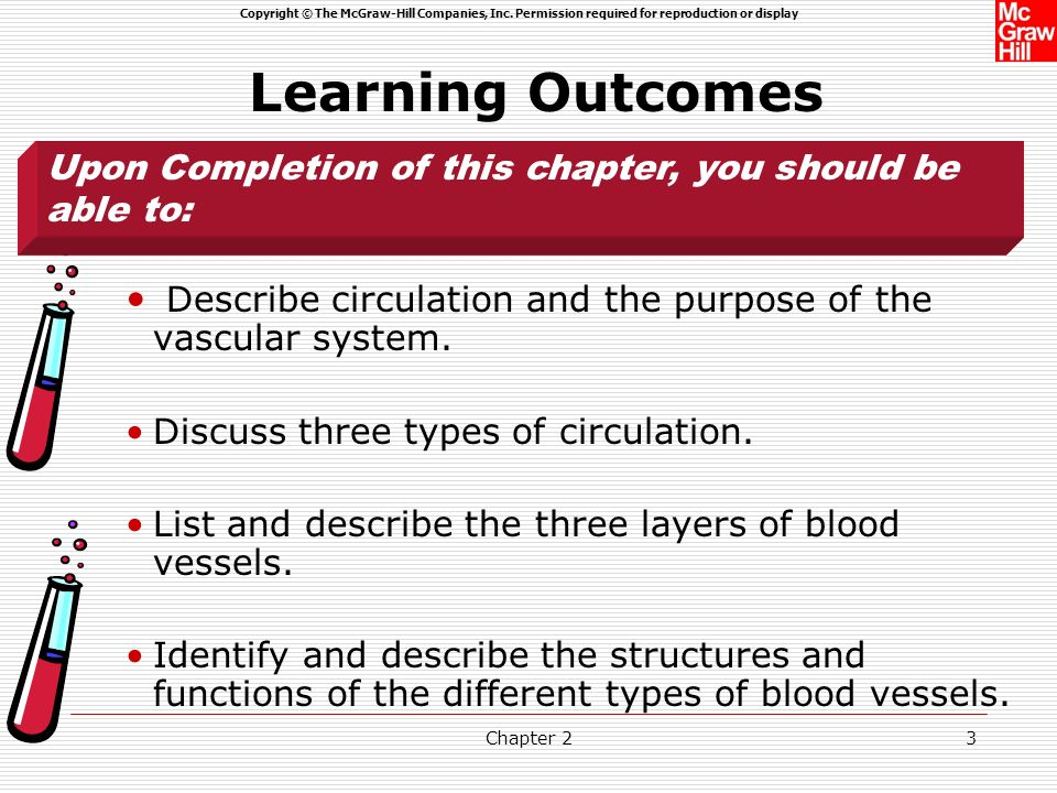Learning Outcomes Upon Completion of this chapter, you should be able to: Describe circulation and the purpose of the vascular system.