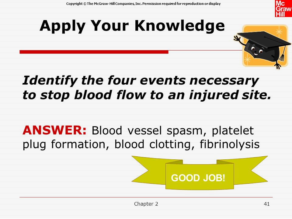 Apply Your Knowledge Identify the four events necessary to stop blood flow to an injured site.