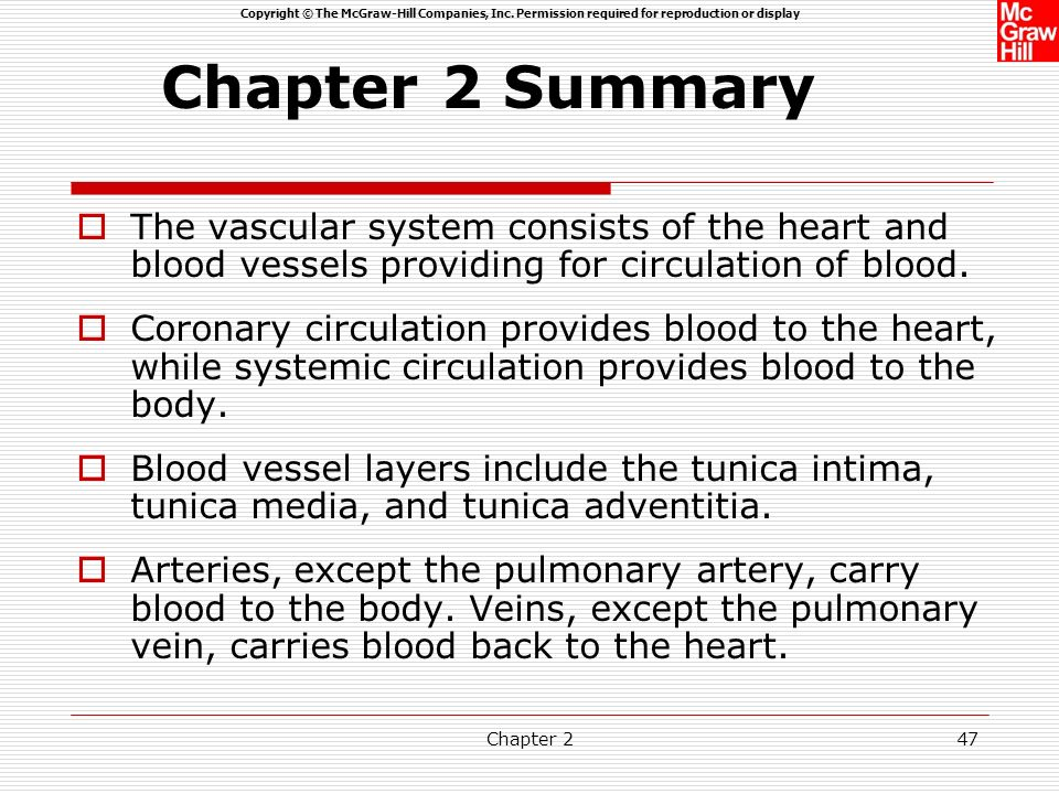 Chapter 2 Summary The vascular system consists of the heart and blood vessels providing for circulation of blood.