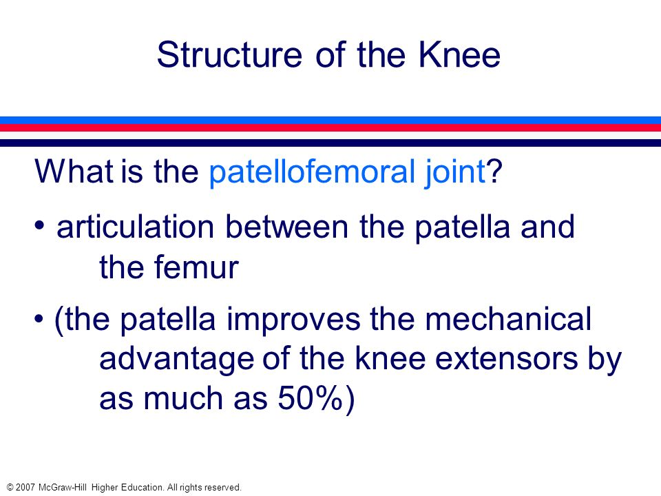 articulation between the patella and the femur