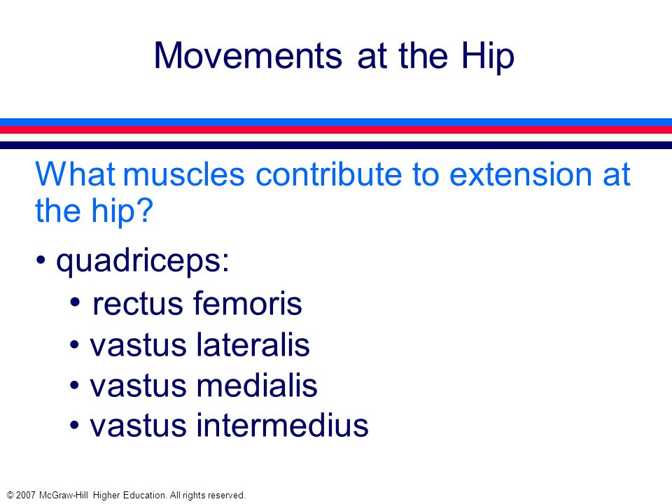 Movements at the Hip rectus femoris