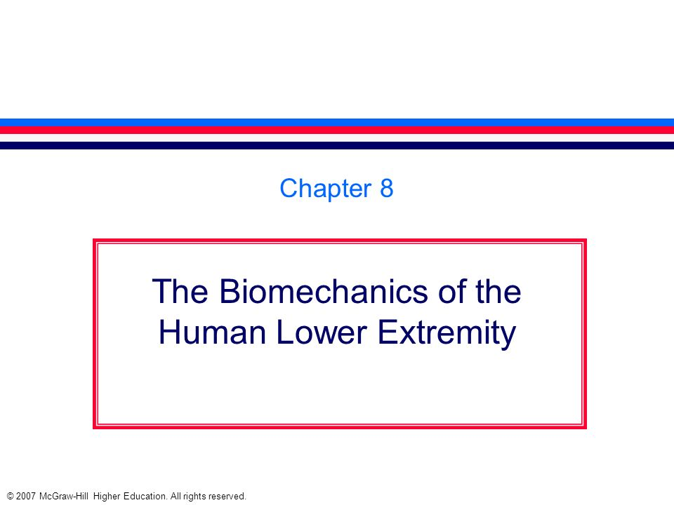 The Biomechanics of the Human Lower Extremity